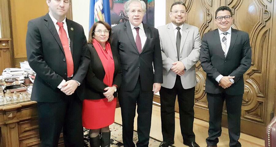 visita OEA